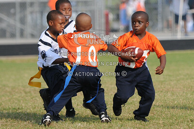 Broncos vs Panthers 081