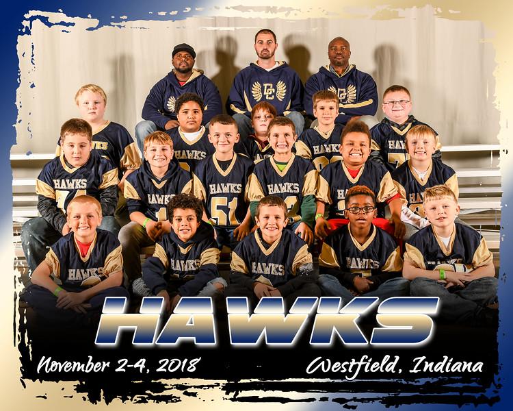 hawks2 A