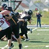 Bulldogs Cerberes 2010  077