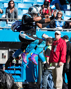 Carolina Panthers quarterback Cam Newton (1)