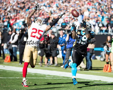 Carolina Panthers wide receiver Steve Smith (89), San Francisco 49ers cornerback Tarell Brown (25)