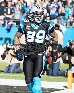 Carolina Panthers wide receiver Steve Smith (89)