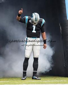 Carolina Panthers quarterback Cam Newton (1)