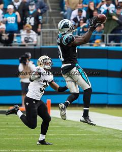 Carolina Panthers wide receiver Brandon LaFell (11)