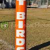 TBIRDS V TS AL 505