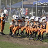 Dophins vs Sharks (PeeWee) 010