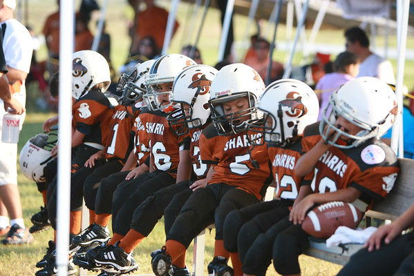 Raiders vs Sharks_PeeWee