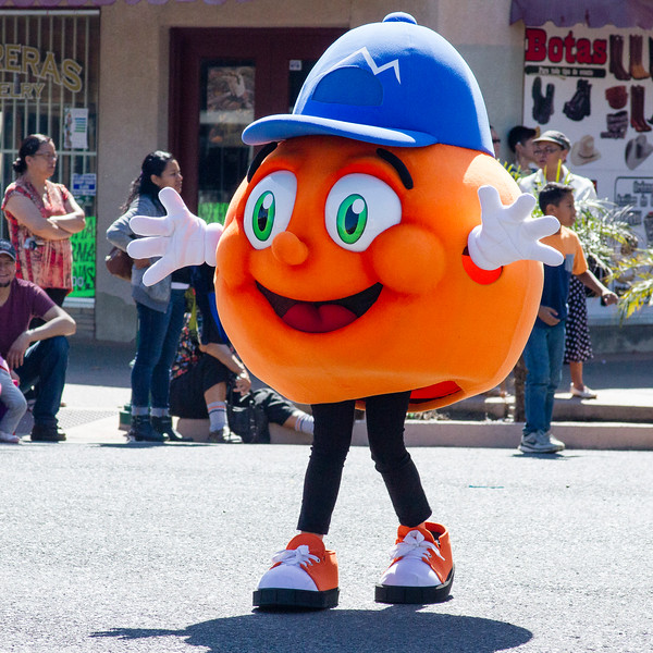 Participants in the 2016 Lindsay Orange Blossom Festival parade. The McDermont Fieldhouse mascot  was a participant in the Orange Blossom Festival parade.
