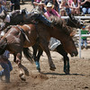 A cowboy holds on for dear life duing the Saddle Bronc competition at the 2014 edition of the Woodlake Lions Rodeo.