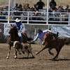 A steer wrestler leaves his horse during the Steer Wrestling event at the 61st Annual Woodlake Lions Rodeo.