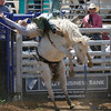 There was plenty of thrills and spills during the Saddle Bronc portion of the 61st Annual Woodlake Lions rodeo.