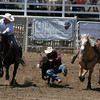 A steer wrestler in action at the 61st Annual Woodlake Lions Rodeo on Saturday, May 10th.