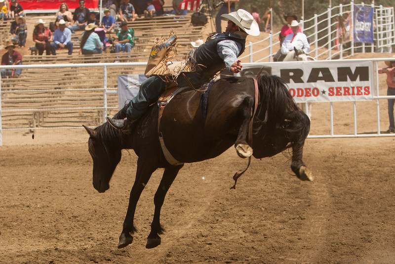 A bareback rider at the 62nd Annual Woodlake Lions Club rodeo on Saturday, May 9, 2015.