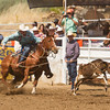 A participant in the calf roping event at the 2015 edition of the Woodlake Lions Club Rodeo on Saturday, May 9th.
