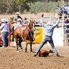 The 65th Annual Woodlake Lions Club Rodeo took place on Mother's Day weekend at the Woodlake Rodeo grounds in Elderwood. This tie-down roper signals to the judge, behind his horse, that he has completed tying his calf. The calf must then stay tied for 6 seconds.