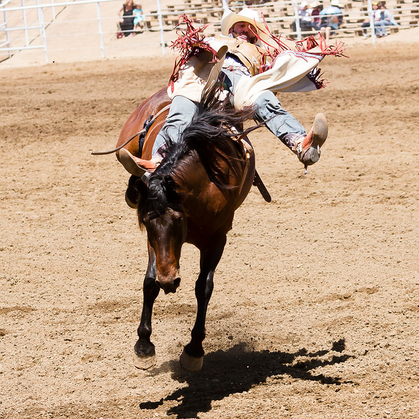 The 65th Annual Woodlake Lions Club Rodeo took place on Mother's Day weekend at the Woodlake Rodeo grounds in Elderwood. This bareback rider fights to hang on.