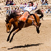 The 65th Annual Woodlake Lions Club Rodeo took place on Mother's Day weekend at the Woodlake Rodeo grounds in Elderwood. Bareback bronc riders are required to start the ride with their spurs above their mounts shoulders otherwise it is a disqualification.