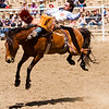 The 65th Annual Woodlake Lions Club Rodeo took place on Mother's Day weekend at the Woodlake Rodeo grounds in Elderwood.  This bronc flies high attempting to remove the bareback bronc rider from his back.