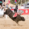 The 65th Annual Woodlake Lions Club Rodeo took place on Mother's Day weekend at the Woodlake Rodeo grounds in Elderwood. A bullrider shows near perfect form.