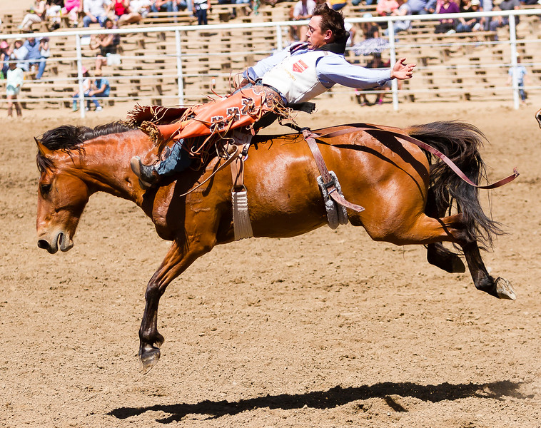 The 65th Annual Woodlake Lions Club Rodeo took place on Mother's Day weekend at the Woodlake Rodeo grounds in Elderwood. This bareback bronc rider shows perfect form during his effort.