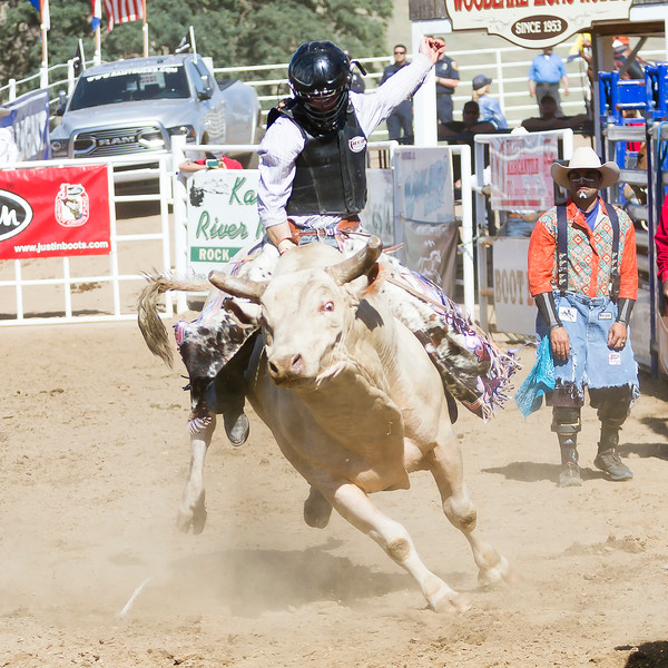 The 65th Annual Woodlake Lions Club Rodeo took place on Mother's Day weekend at the Woodlake Rodeo grounds in Elderwood. Bulllriding is always a big hit at the annual rodeo.