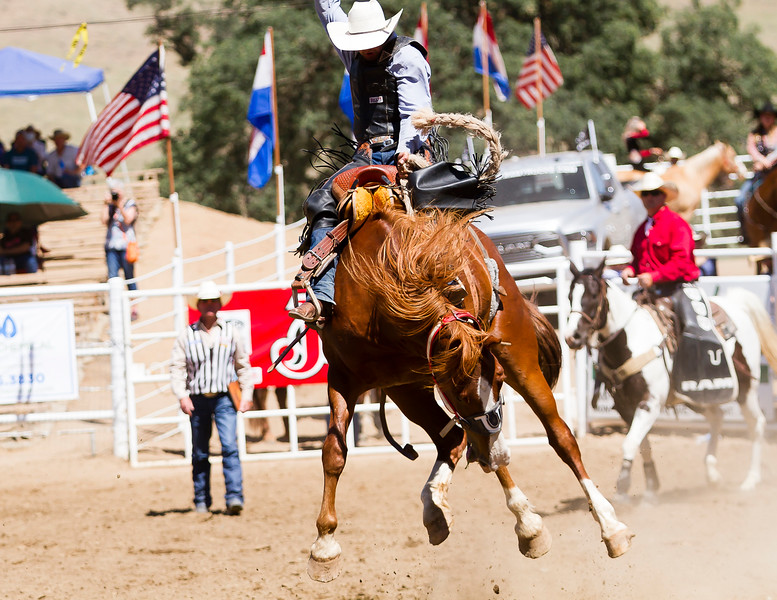 The 65th Annual Woodlake Lions Club Rodeo took place on Mother's Day weekend at the Woodlake Rodeo grounds in Elderwood. A saddle bronc competitor holds on tight.