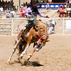 The 65th Annual Woodlake Lions Club Rodeo took place on Mother's Day weekend at the Woodlake Rodeo grounds in Elderwood.  This saddle bronc rider tries to use just the right amount of rein to stay on his horse.