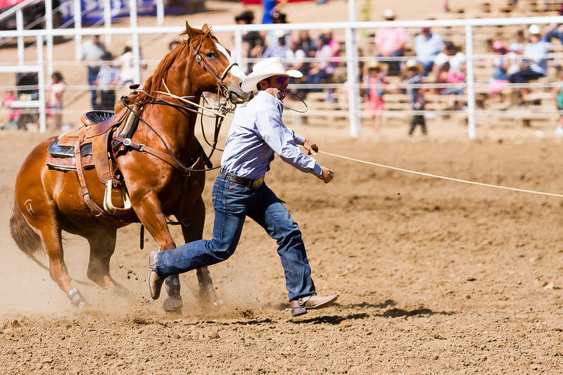 The 65th Annual Woodlake Lions Club Rodeo took place on Mother's Day weekend at the Woodlake Rodeo grounds in Elderwood. Once a tie-down roper has roped his calf, he dismounts his horse and ties three of the calf's legs. This allowed the cowboys to work with the calves to do such tasks as branding and ear tagging.