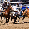 The 65th Annual Woodlake Lions Club Rodeo took place on Mother's Day weekend at the Woodlake Rodeo grounds in Elderwood. A steer wrestler, working with his hazer, launches himself off his horse to wrestle his steer.