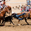 Steer wrestling was on of the events competed at the 65th Annual Woodlake Lions Club Rodeo took place on Mother's Day weekend at the Woodlake Rodeo grounds in Elderwood along with bareback riding, saddle bronc riding, bull riding, team roping, tie-down roping, and barrel racing.