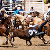 The 65th Annual Woodlake Lions Club Rodeo took place on Mother's Day weekend at the Woodlake Rodeo grounds in Elderwood. A steer wrestler leave his horse to wrestle his steer.