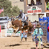 The 65th Annual Woodlake Lions Club Rodeo took place on Mother's Day weekend at the Woodlake Rodeo grounds in Elderwood. Bullriding is always one of the most popular events at the Lion's rodeo.