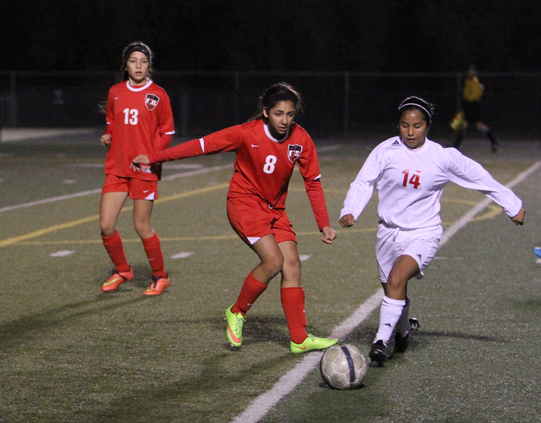 The Lindsay Cardinal girls soccer team suffered a heartbreaking loss at the hands of the Fowler Redcats 2-1 in double overtime.