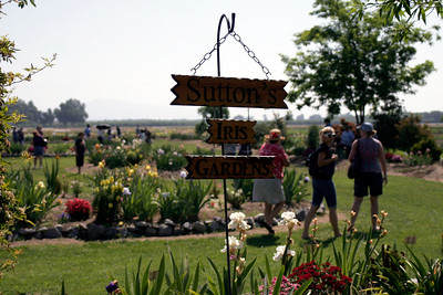 Entrance to Sutton's Iris Garden as seen during the annual Porterville Iris Festival on Saturday, April 27, 2013.