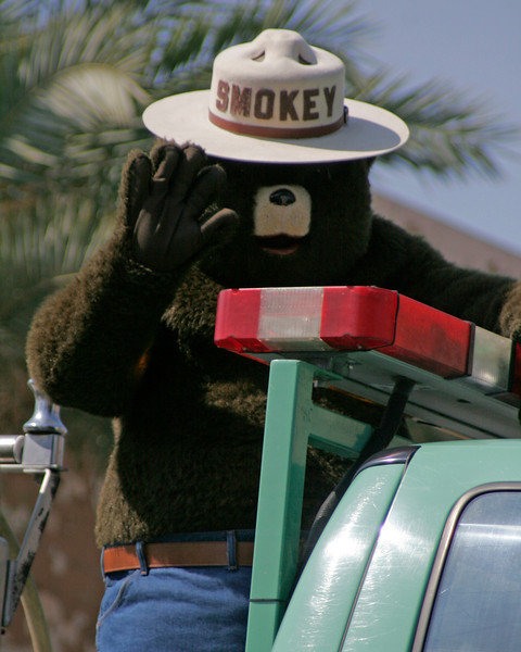 Smokey the Bear was in attendance at the 2014 Lindsay Orange Blossom Festival parade.