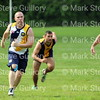 Footy - BRT Metro League - Gold v Navy 032517 019