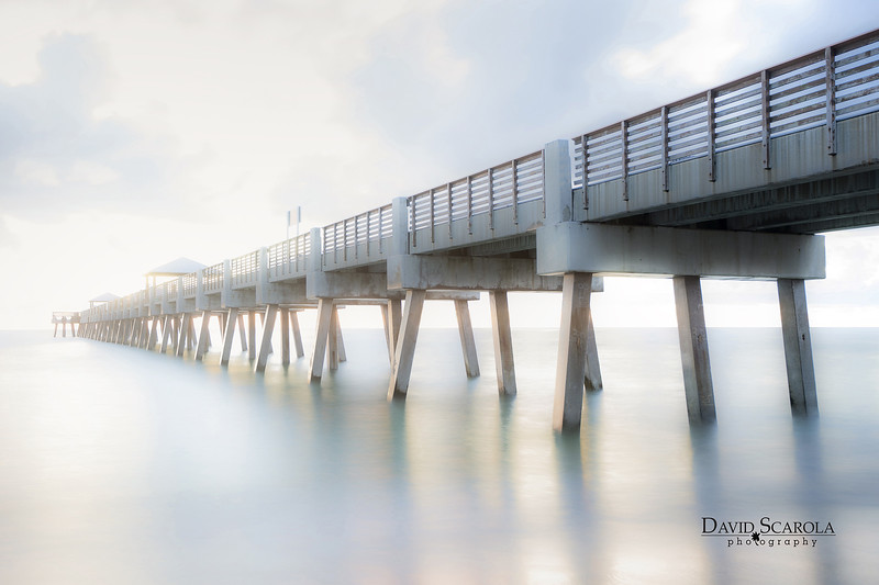 DSC08455 David Scarola Photography, June 2017
