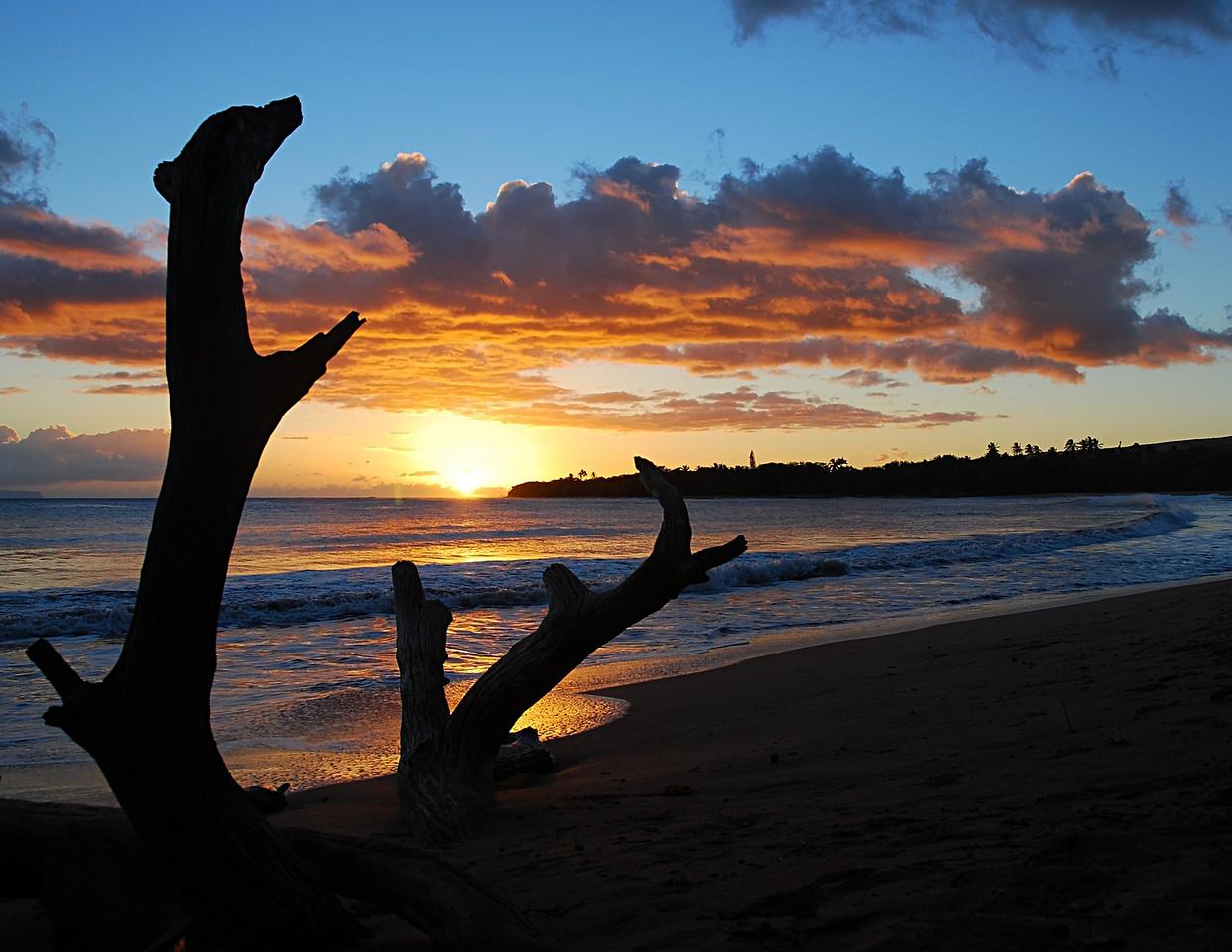 "September<br /> <br /> ""Radiance""<br /> Hoanuanu Bay<br /> Kauai, Hawaii"