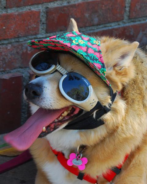 keepin' cool