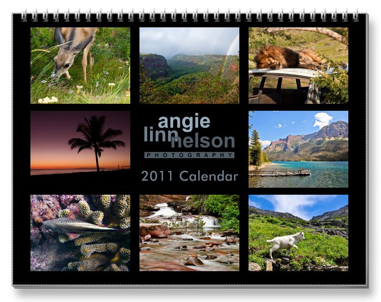 "My 2011 calendar can be purchased at <a href = ""http://www.zazzle.com/2011_photography_calendar-158694699439883228"">Zazzle</a>"