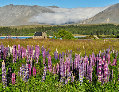 Lakeside Church of the Good Shepherd Lake Tekapo, New Zealand