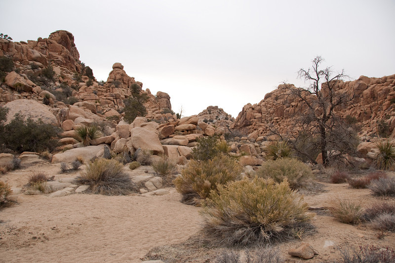 box canyon (hidden valley)