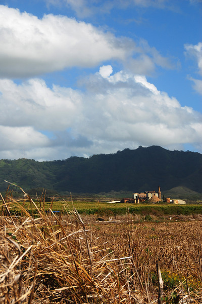 koloa sugar mill