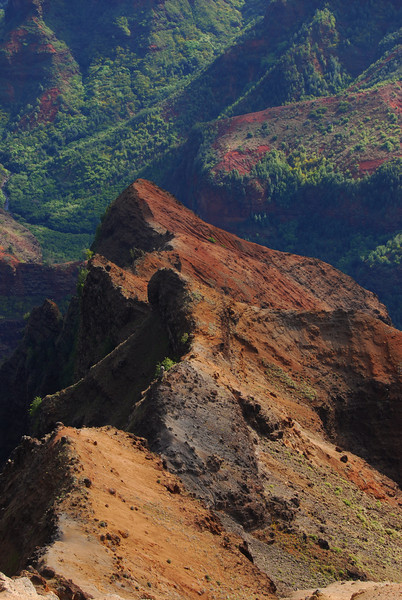 waimea canyon detail