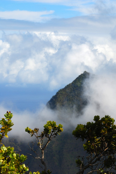 na pali cloud forest