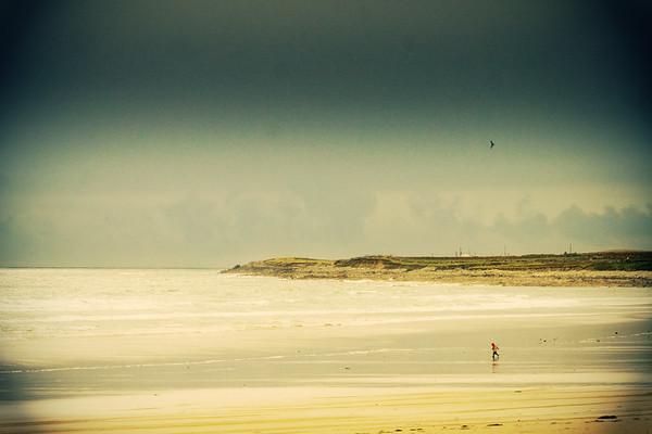 the joy of the Bervie's beach