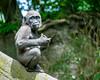 2017-05 Bronx Zoo 0168
