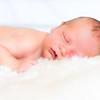 Oreshack Newborn