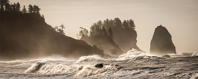 A Windswept La Push