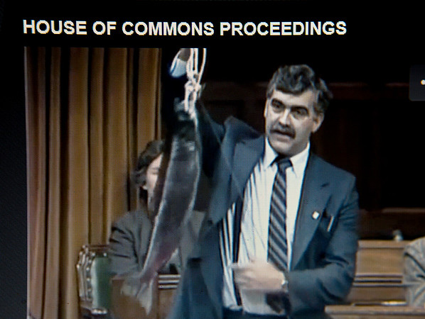 Debates House of Commons proceedings October 16,1985  holding a salmon Jim Fulton NDP MP Skeena British Columbia.